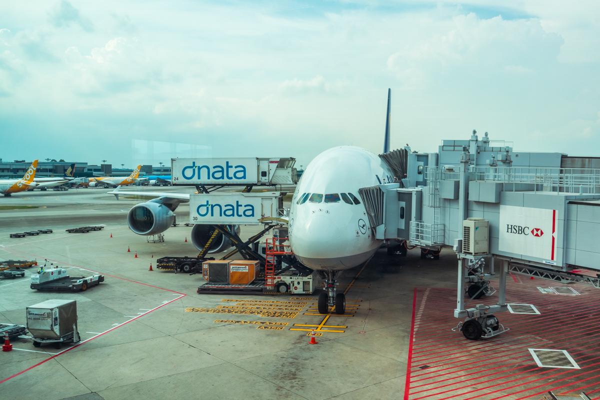 Lufthansa plane on tarmac