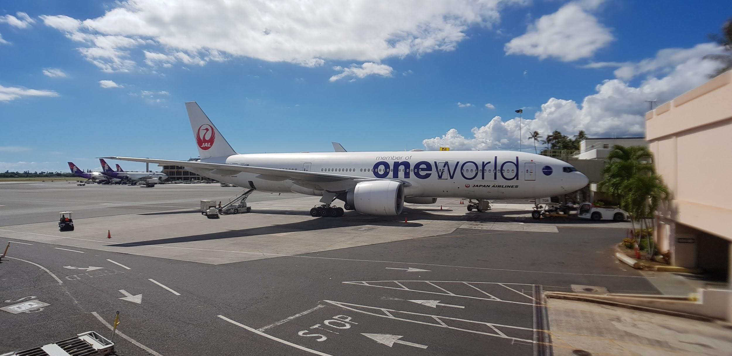 JAL oneworld Airplane | Point Hacks