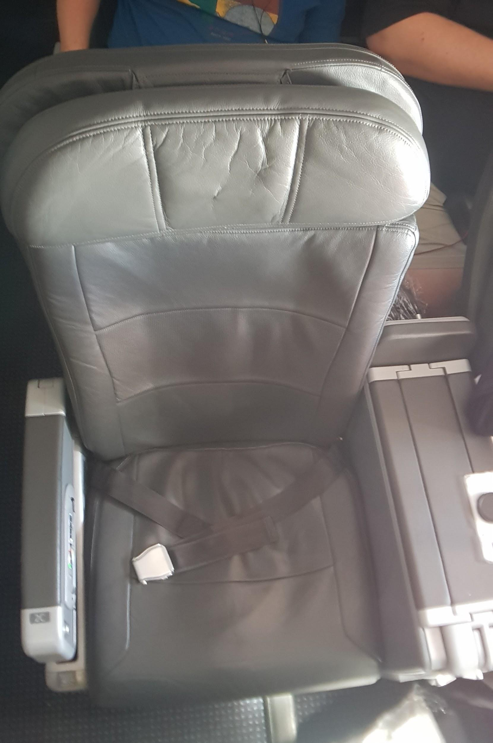 American Airlines Domestic Business Class