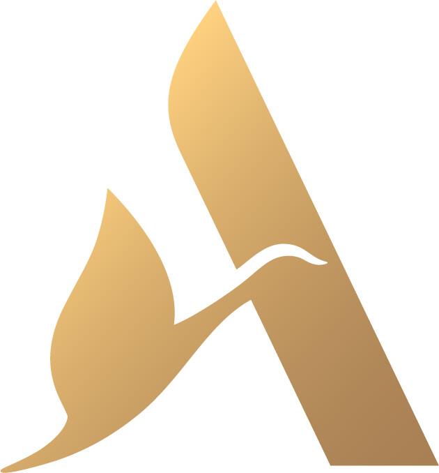 Accor Ibis Logo