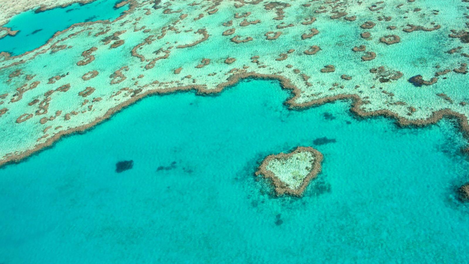 Heart Island Great Barrier Reef