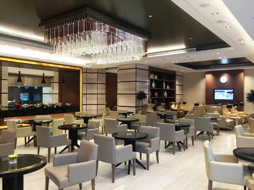 Dubai International Airport Hotel Executive Lounge