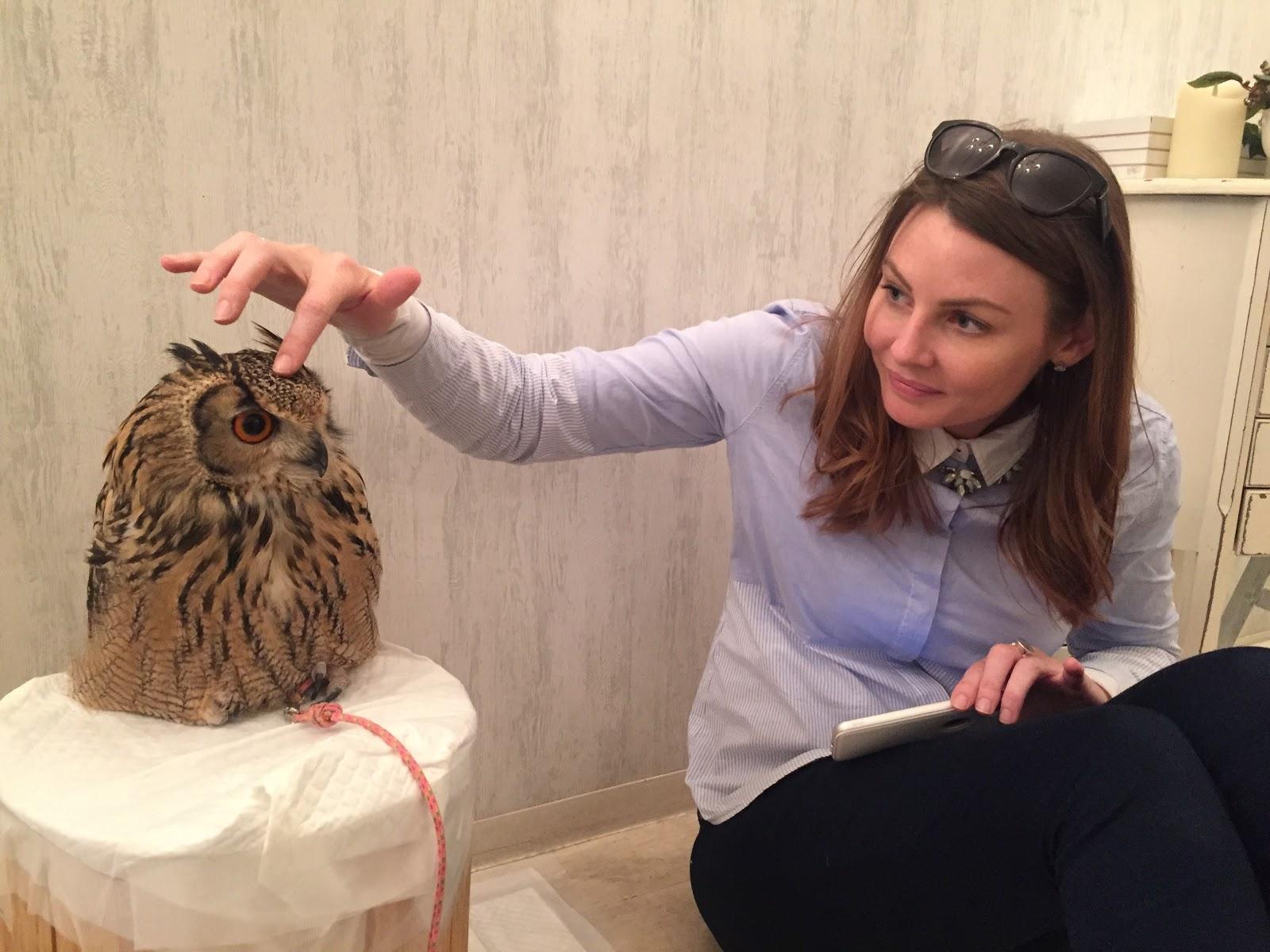 Owl Cafe Tokyo | Point Hacks